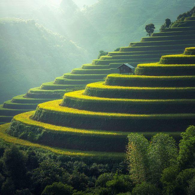 Viaje a Vietnam - Señora Sheldon Agencia de Viajes